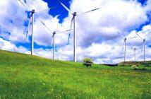 wind-land-peyzazh-zelenaya
