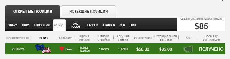 приб. доджи_6